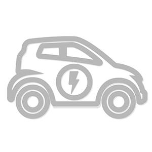 Caricatori da Auto